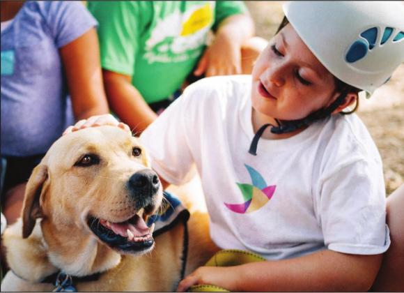 The Phoenix Center services include children's therapy groups with innovative methods such as animal-assisted therapy. Contributed photo